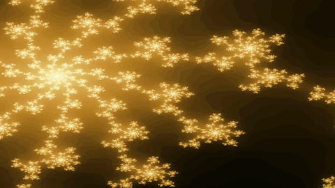 Digital Animation of a Fractal Shape Animation