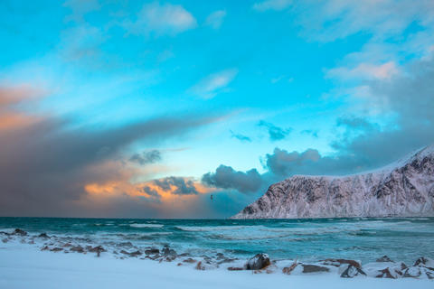 Winter Norway. Sea Surf and Bird above the Waves フォト