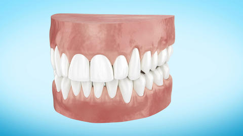 Beautiful White Clean Teeth Turning Close Up 3d Animation. Alpha Channel. Ultra Animation