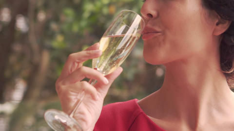 Smiling woman drinking champagne Footage