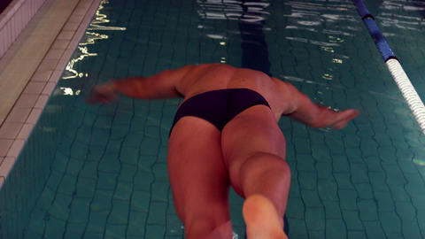 Rear view of swimmer diving into pool Footage