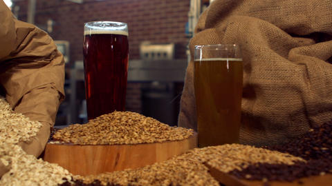 Panning shot of beers and hop grains Footage