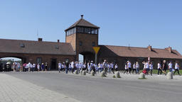Visitors at Auschwitz Birkenau, german, nazi concentration camp Live Action