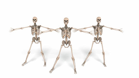 Digital Animation of cheerleading Skeletons Animation
