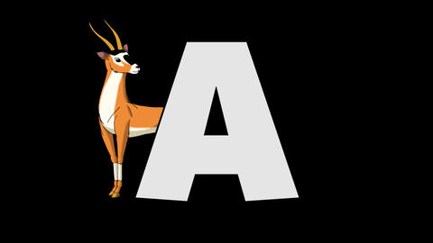 Letter A and Antelope (background) Animation