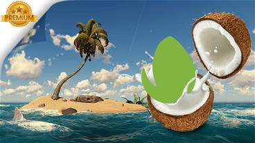 Logo Reveal Nature Coconut After Effects Template
