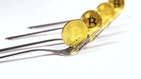 Bitcoins Models on Forks Produced by People and Businesses Footage