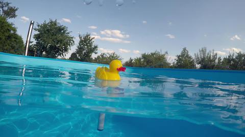 Measure the water temperature in the pool Filmmaterial