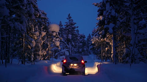 Car is Driving through the Night Winter Forest Footage