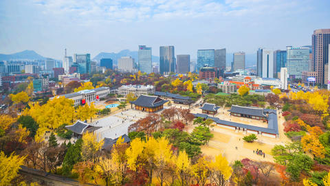 Timelapse Autumn of Deoksugung royal palace and Seoul City Hall in Seoul,South Footage