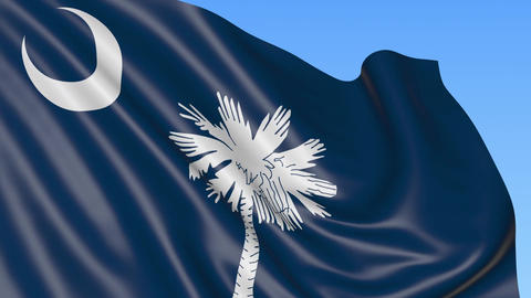Waving flag of South Carolina state against blue sky Footage