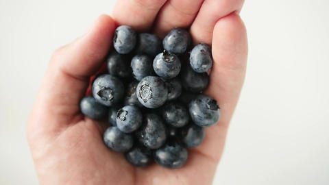 handful of freshly picked blueberries isolated on white Footage