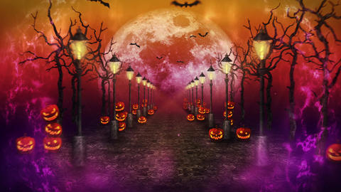 Spooky Halloween night, Pumpkin in a mystic forest, Loop Animation