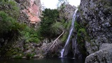 Waterfall in a forest Footage