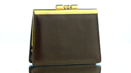Brown Leather Purse Footage