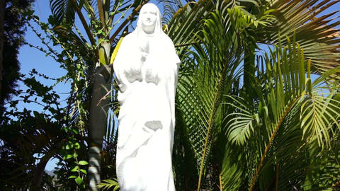 Mother Mary Stock Video Footage