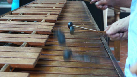 Marimba Stock Video Footage
