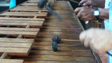 Marimba Footage