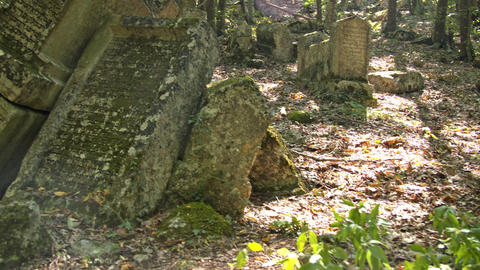 Ancient tombstones in an abandoned cemetery Footage