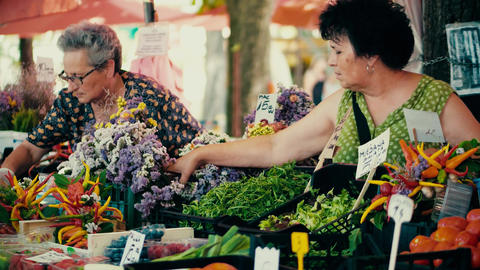 PULA, CROATIA - AUGUST 4, 2017. Female vendors at local farmers market Footage