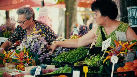 PULA, CROATIA - AUGUST 4, 2017. Female vendors at local farmers market Footage