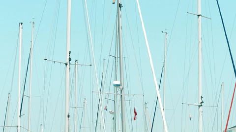 PULA, CROATIA - AUGUST 4, 2017. Moored sailboats' masts at piers Footage