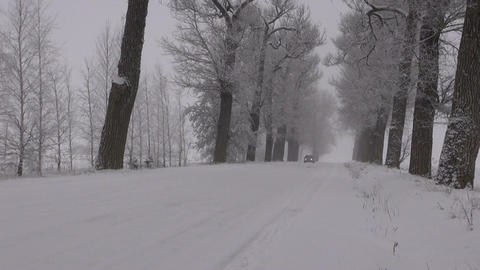 car driving on snowy rural road with tree alley and morning mist Footage