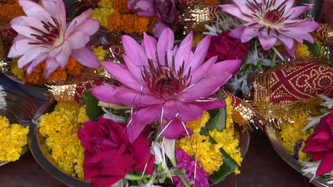 hinduism ritual religion lotus and other flowers in plate, Mumbai market ビデオ