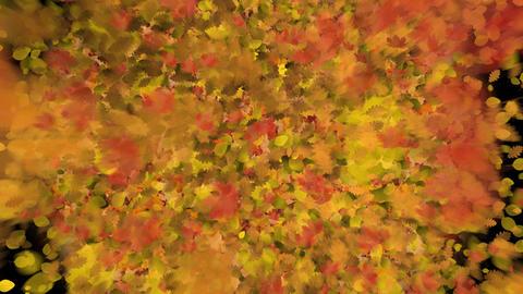 Fountain of autumn leaves Animation