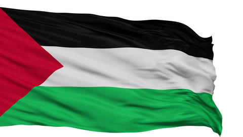 Isolated Waving National Flag of Palestine Animation