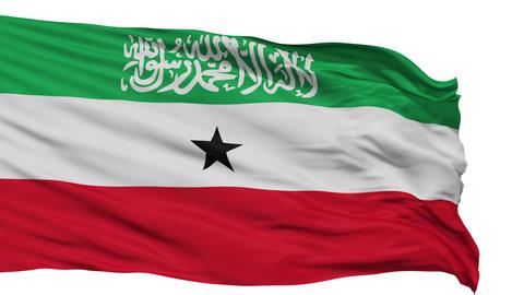 Isolated Waving National Flag of Somaliland Animation