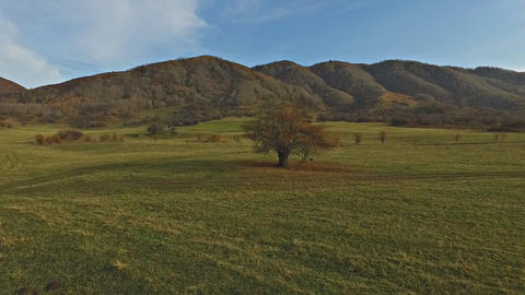 Autumn In The Mountains stock footage
