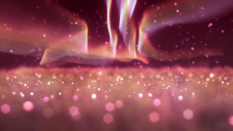 SHA Pink Over the Night Sky Animation