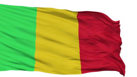 Isolated Waving National Flag of Mali Animation