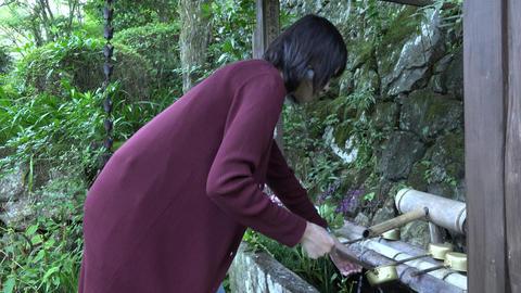 japanese temple sanpai Footage