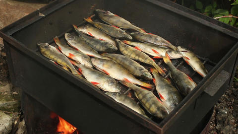 smokehouse smoked perch on the grill ビデオ