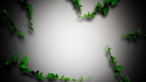 Ring of plant growing, white cloth texture background Animation