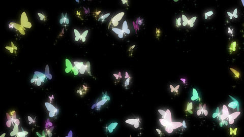 butterflies, colorful Animation