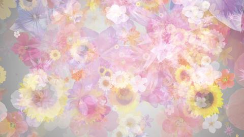 rising flower loop 2, gray CG動画