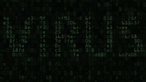 VIRUS caption on the computer screen made of text and numeric symbols, loopable Footage
