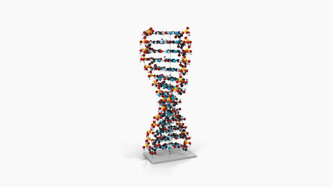 model dna,loop, animation, Alpha channel, transparent background ,hromakey,3d Animation