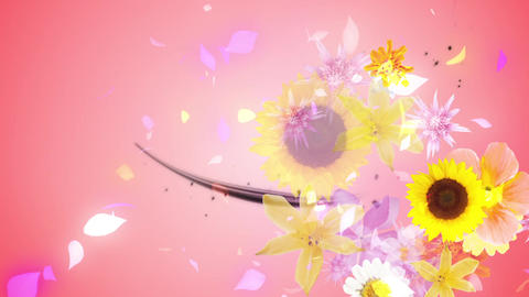 Flowers blooming on the black line 2, pink background CG動画