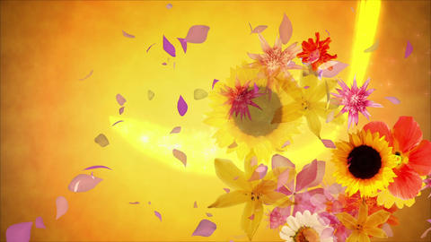 Flowers blooming on the color line 2, golden background CG動画