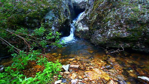 Black Hills Stream Footage