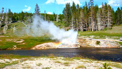Riverside Geyser of Yellowstone National Park Footage