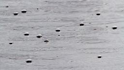 Rain drops in the lake Footage