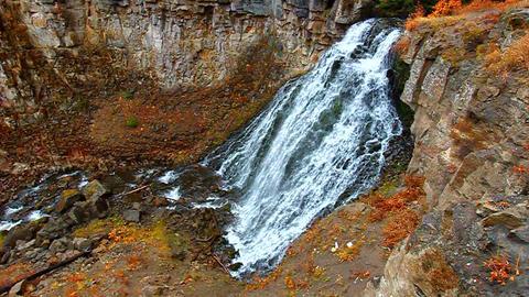 Rustic Falls Yellowstone Footage