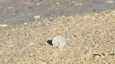 Teapot on one dirham UAE coin, stick out from sand, close up Footage