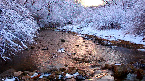 Willow Creek Winter Scene Illinois Footage
