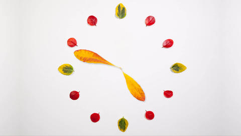Autumn Time 画像
